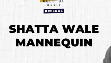 Photo of Shatta Wale & Gold Up – Mannequin (Prod By Gold Up Music)