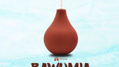 Photo of Cabum – Bawumia (Buh I'll Mia)