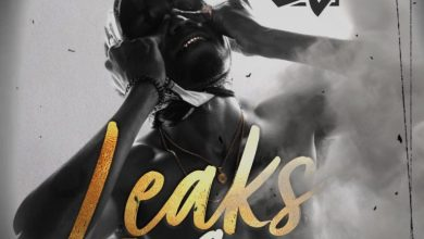 Photo of E.L – Your Life (Leaks 4)