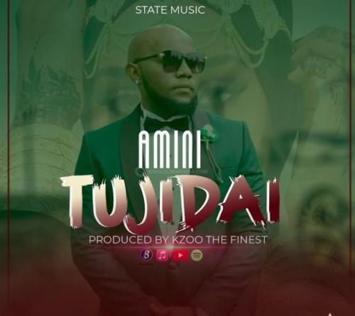 Amini – Tujidai