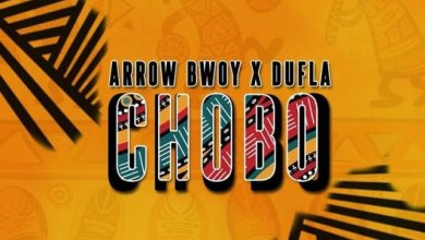 Photo of Arrow Bwoy Ft Dufla Diligon – Chobo