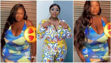 Photo of Actress Maame Serwaa Seduces Men With Her Big Natural Melons – Video
