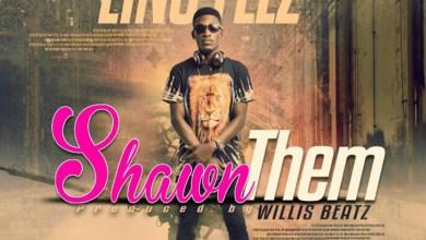 Photo of Audio: Shawn Them by Lino Flez
