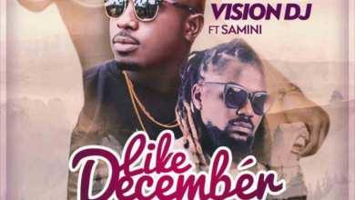 Like December by Vision DJ feat. Samini