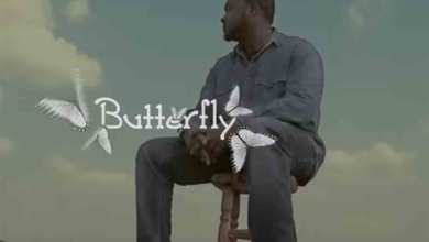 Photo of Video: Butterfly by Kojo Wusu