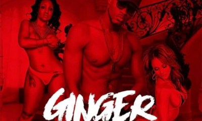 Ginger by Sean Taylor
