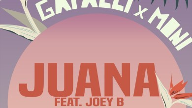 Juana by Gafacci & Moni feat. Joey B