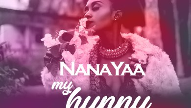 Photo of NanaYaa releases visuals for My Hunny