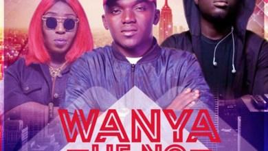 Photo of Audio: Wanya Lie No by Phrimpong feat. Eno Barony & Amerado