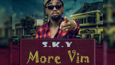 More Vim by S. K. Y De Tamale Boy