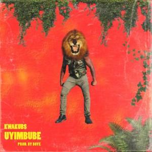 Uyimbube by Kwaku Bs