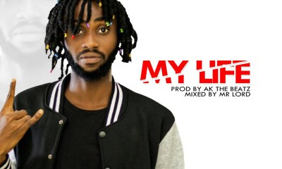 My Life by Skye Brain