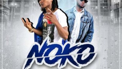 Photo of Audio: Noko by Gariba feat. Rowan
