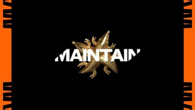 Photo of Audio: Maintain by Juls & Kwesi Arthur