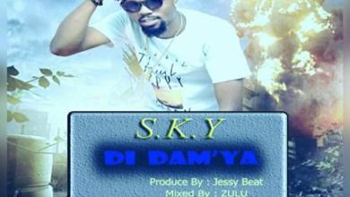 Photo of Audio: Di Dam'ya by S. K. Y. De Tamale Boy