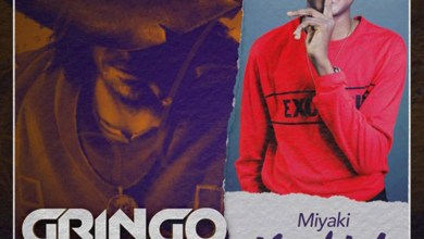 Photo of Audio: Hard Life (Gringo Riddim) by MiYaki