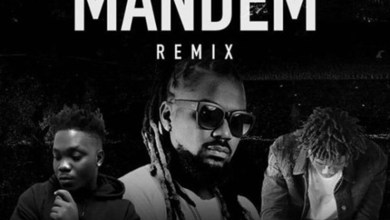 Photo of Audio: Mandem by Star Vicy & Welzy feat. Samini