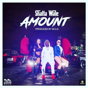 Amount by Shatta Wale