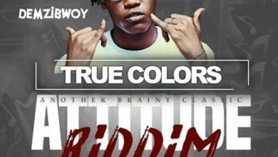 Photo of Audio: True Colors (Attitude Riddim) by Demzibwoy