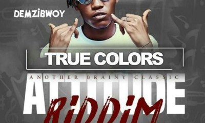 True Colors (Attitude Riddim) by Demzibwoy