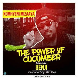 The Power Of Cucumber by Komhyeni Mizaaya