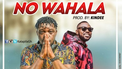 Photo of Audio: No Wahala by Nsemonee feat. Yaa Pono