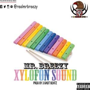 Xylofon Sound by Mr Breezy