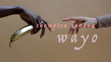 Photo of Audio: Champion Banana by Wayo