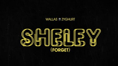 Sheley by Wallas feat. Zyghurt