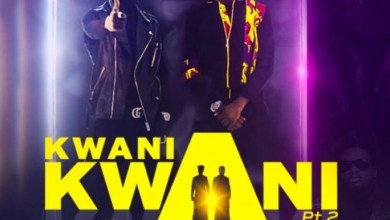 Photo of Audio: Kwani Kwani by Tic feat. Kuami Eugene
