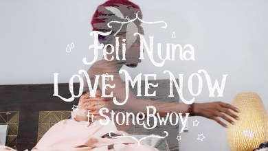 Photo of Video: Love Me Now by Feli Nuna feat. Stonebwoy