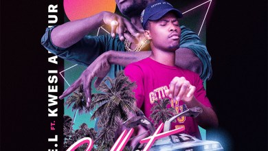 Photo of Audio: Collect by E.L feat. Kwesi Arthur