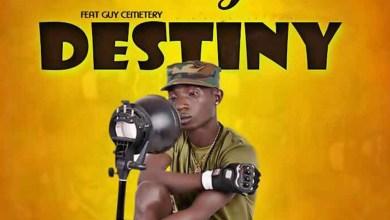Photo of Audio: My Destiny by Patapaa feat. Guy Cemetery