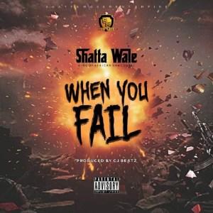 When You Fail by Shatta Wale