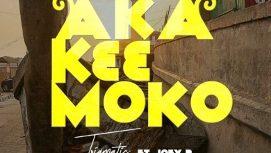 Photo of Audio: Aka Kɛɛ Moko by Trigmatic feat. Joey B
