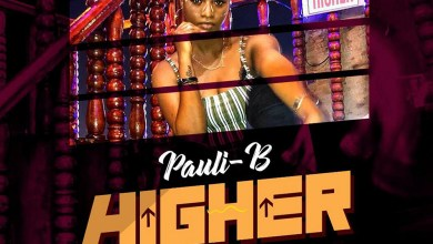 Photo of Audio: Higher by Pauli-B