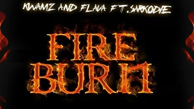 Fire Burn by Kwamz And Flava feat. Sarkodie
