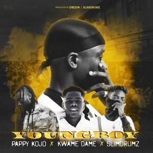 Young Boy by DredW feat. Pappy Kojo, Kwame Dame & SlimDrumz