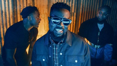 Photo of Video Premiere: Party & Bullsh#t by Sarkodie feat. Donae'O & Idris Elba