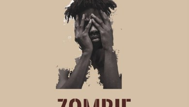Photo of Audio: Zombie by Kwesi Arthur