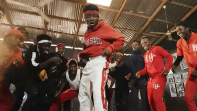 Photo of Video: Afrodance by DJ Vyrusky feat. Shatta Wale