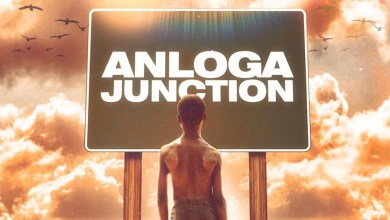 "Photo of Stonebwoy to take a self-quarantine vacation at ""Anloga Junction"""