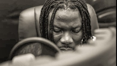 Photo of Stonebwoy paints full picture of the African sound with all 8 features on; Anloga Junction album