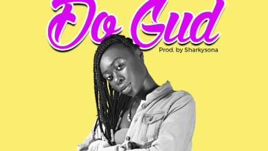 Photo of Audio: Do Gud by Snowie