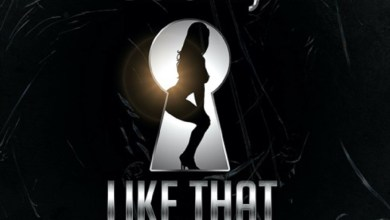 Photo of Audio: Like That by GoldKay feat. Captain Hook
