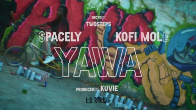 Photo of Video: Yawa by $pacely feat. Kofi Mole