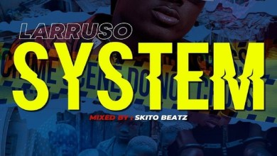 Photo of Audio: System by Larruso