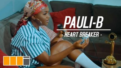 Heart Breaker by Pauli-B