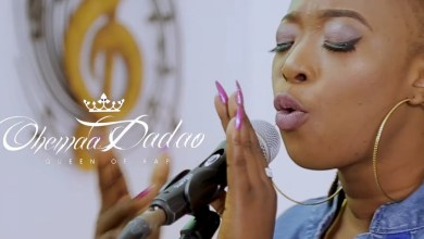 Photo of Video: Lioness by Ohemaa Dadao