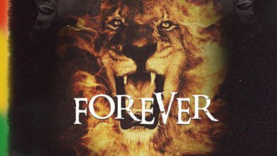 Photo of Audio: Forever by Samini